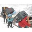 Кейс Pelican 1610 Protector Case  с перегородками TrekPak черный 1610TP